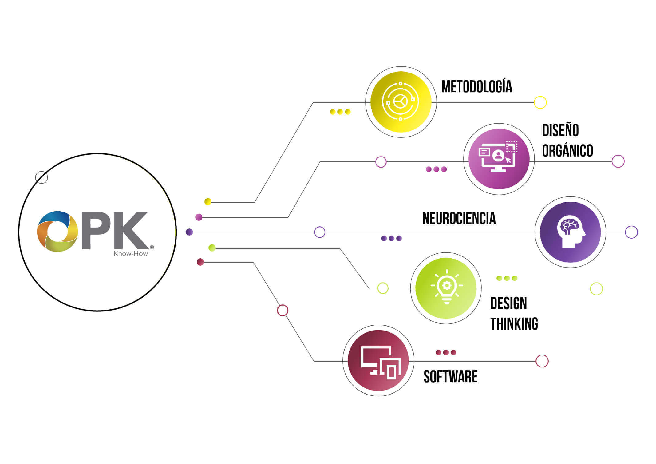 OPK Capacitacion online